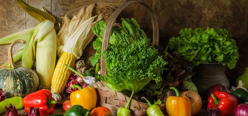 4 raisons de consommer des produits locaux bio
